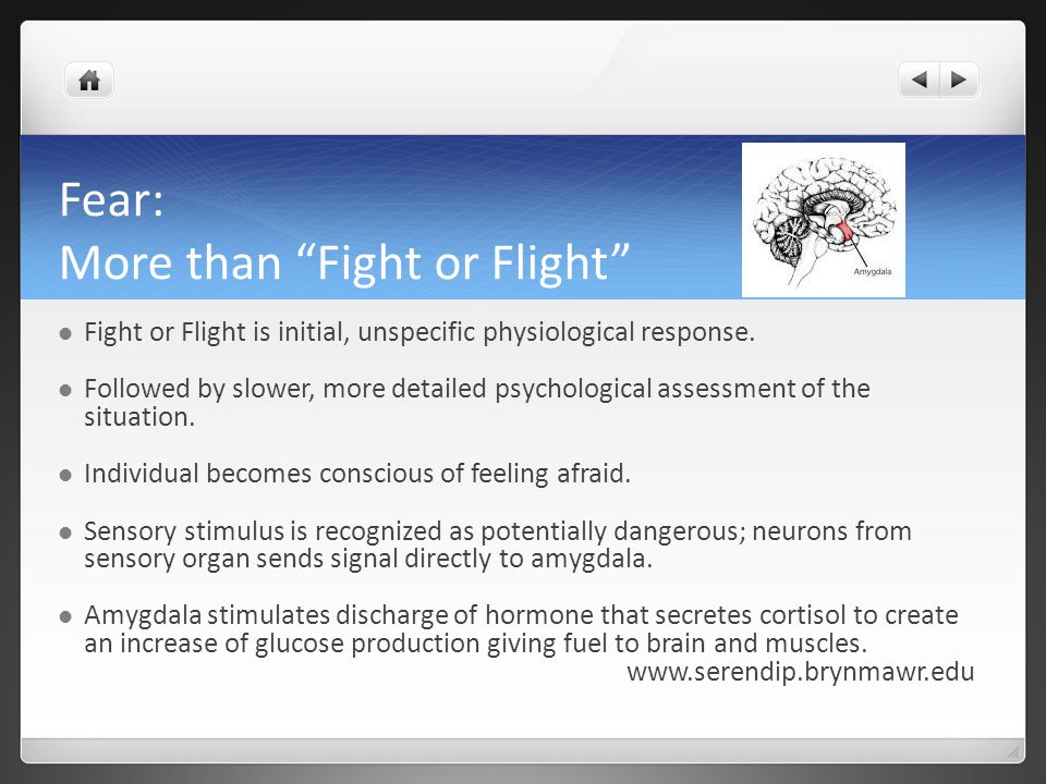 Fear: More than Fight or Flight Fight or Flight is initial, unspecific physiological response.
