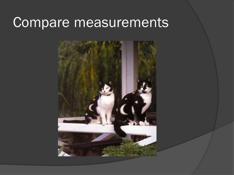 Compare measurements
