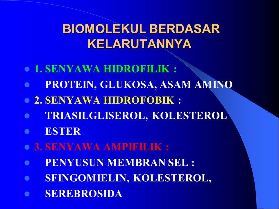 BIOMOLEKUL BERDASAR KELARUTANNYA BIOMOLEKUL BERDASAR KELARUTANNYA 1.