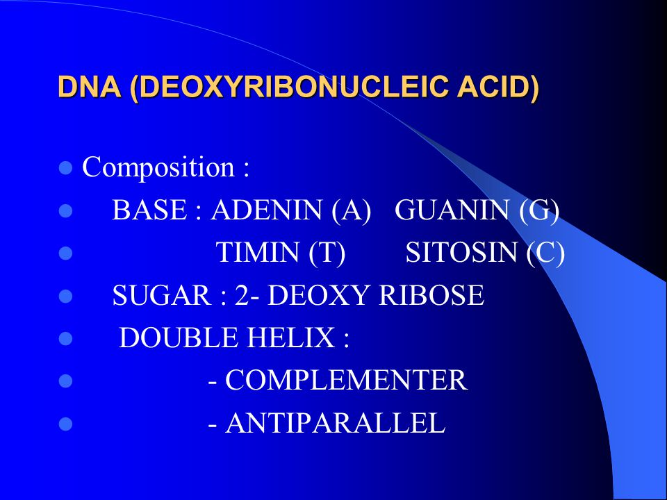DNA (DEOXYRIBONUCLEIC ACID) Composition : BASE : ADENIN (A) GUANIN (G) TIMIN (T) SITOSIN (C) SUGAR : 2- DEOXY RIBOSE DOUBLE HELIX : - COMPLEMENTER - A