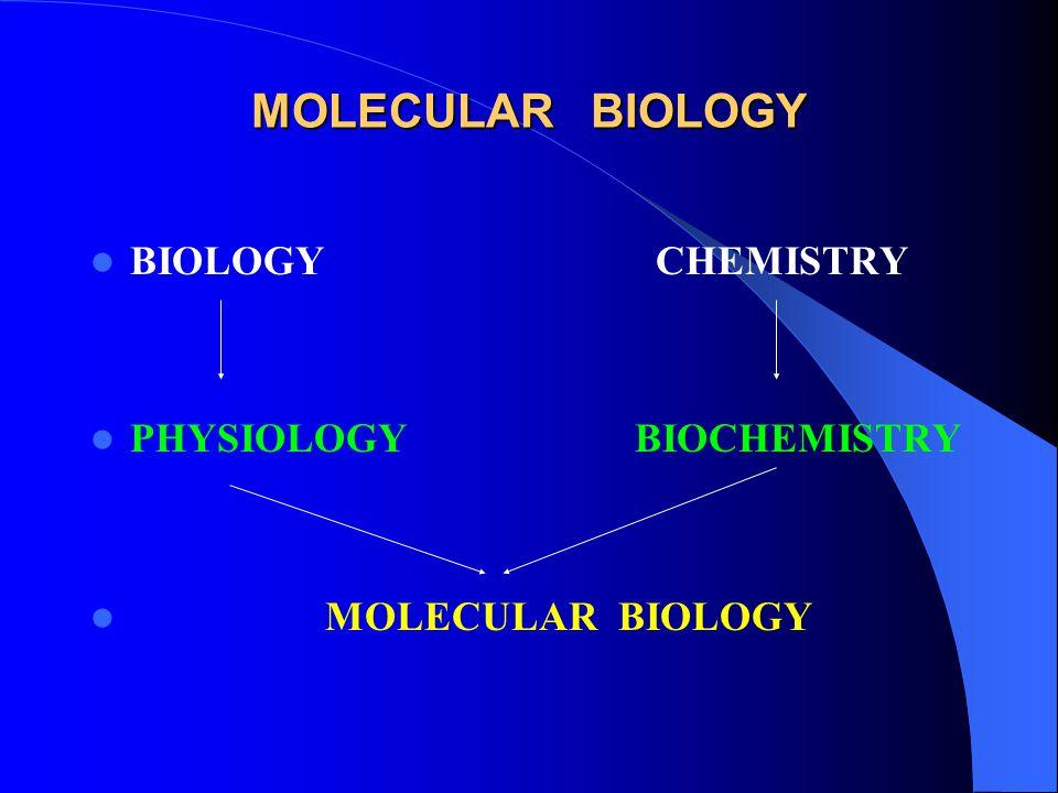 MOLECULAR BIOLOGY BIOLOGY CHEMISTRY PHYSIOLOGY BIOCHEMISTRY MOLECULAR BIOLOGY