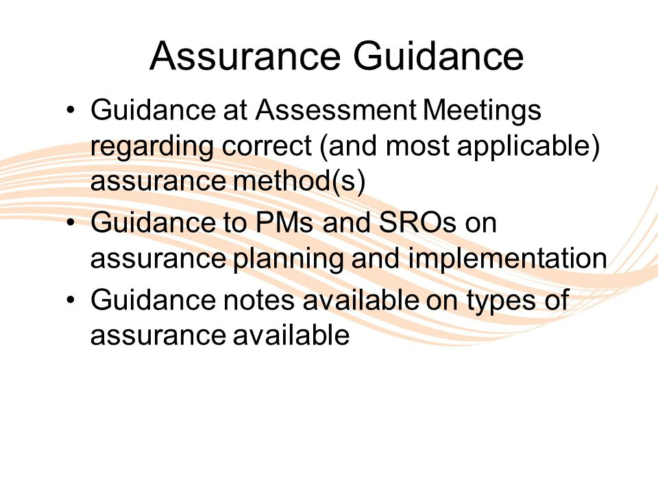 Valuing People Assurance Guidance Guidance at Assessment Meetings regarding correct (and most applicable) assurance method(s) Guidance to PMs and SROs on assurance planning and implementation Guidance notes available on types of assurance available