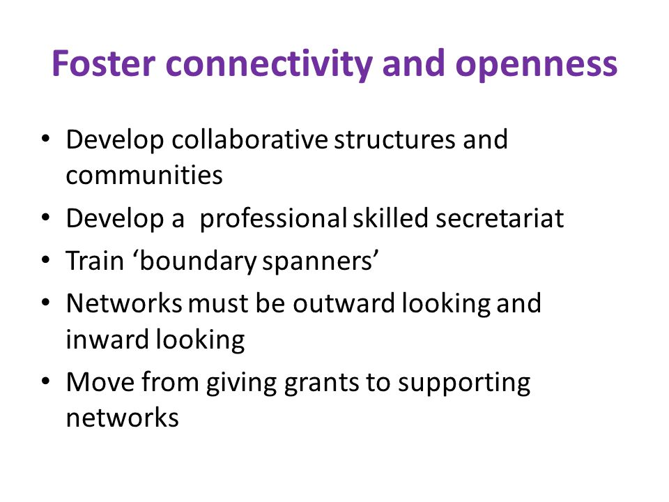Foster connectivity and openness Develop collaborative structures and communities Develop a professional skilled secretariat Train 'boundary spanners' Networks must be outward looking and inward looking Move from giving grants to supporting networks