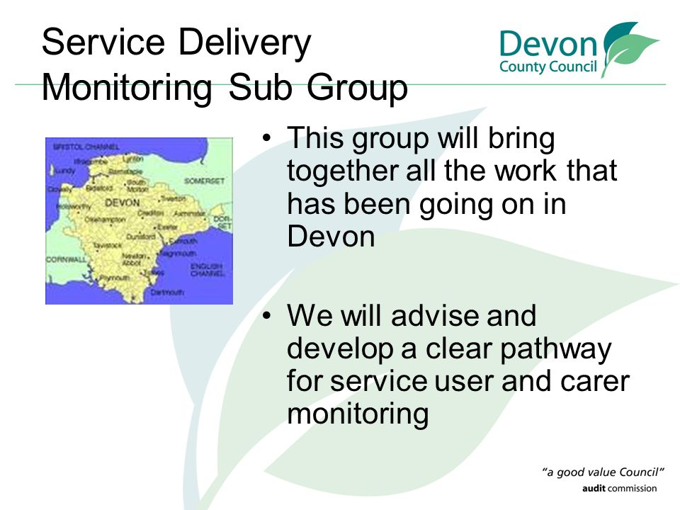 Service Delivery Monitoring Sub Group This group will bring together all the work that has been going on in Devon We will advise and develop a clear pathway for service user and carer monitoring