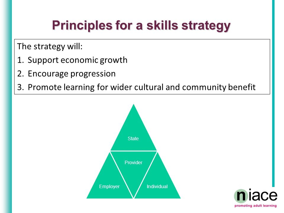Principles for a skills strategy The strategy will: 1.Support economic growth 2.Encourage progression 3.Promote learning for wider cultural and community benefit StateEmployer Provider Individual