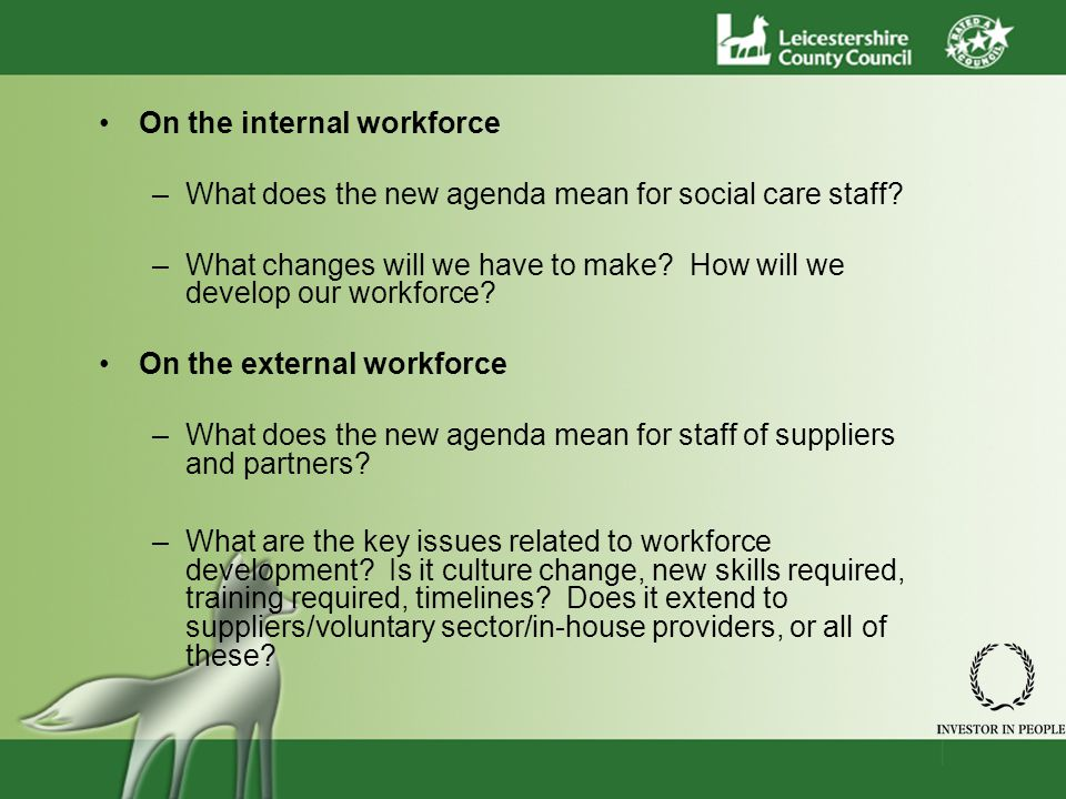 On the internal workforce –What does the new agenda mean for social care staff? –What changes will we have to make? How will we develop our workforce?