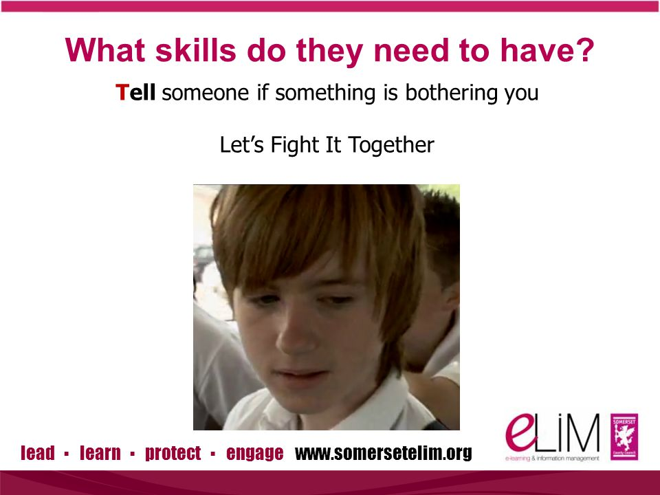lead ▪ learn ▪ protect ▪ engage www.somersetelim.org What skills do they need to have.
