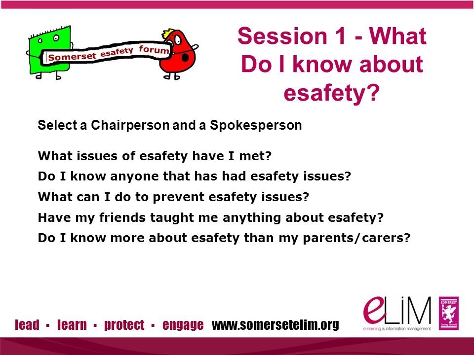 lead ▪ learn ▪ protect ▪ engage www.somersetelim.org Session One Feedback What issues of esafety have I met.