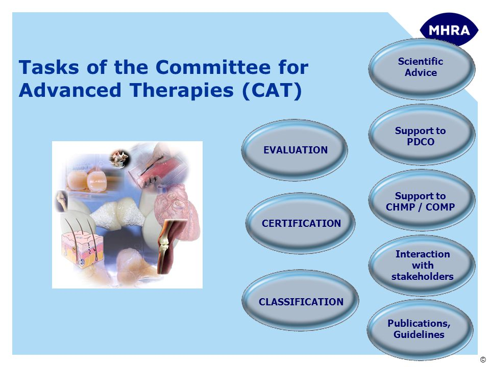 © CLASSIFICATION EVALUATION CERTIFICATION Tasks of the CAT Tasks of the Committee for Advanced Therapies (CAT) Scientific Advice Support to PDCO Support to CHMP / COMP Interaction with stakeholders Publications, Guidelines
