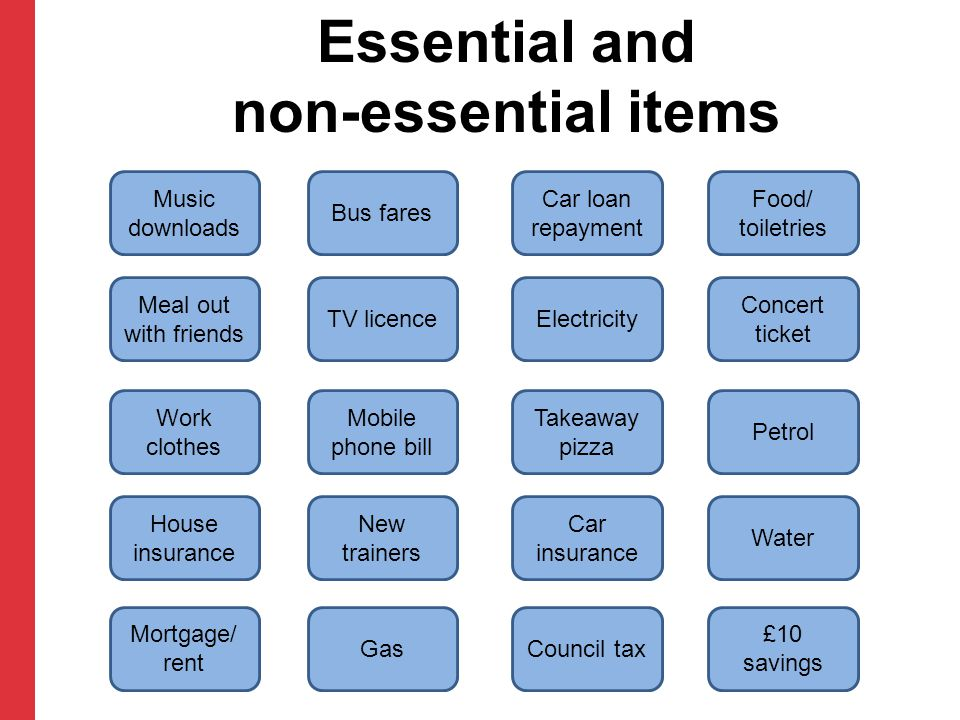 Essential and non-essential items Music downloads Bus fares Car loan repayment Food/ toiletries Meal out with friends TV licenceElectricity Concert ti