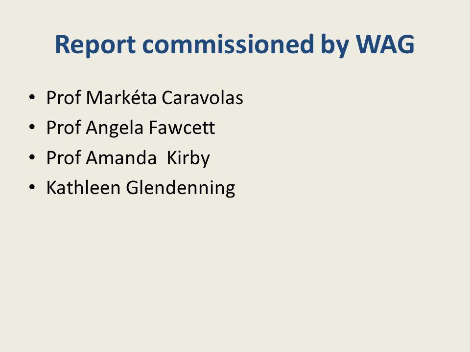 Report commissioned by WAG Prof Markéta Caravolas Prof Angela Fawcett Prof Amanda Kirby Kathleen Glendenning