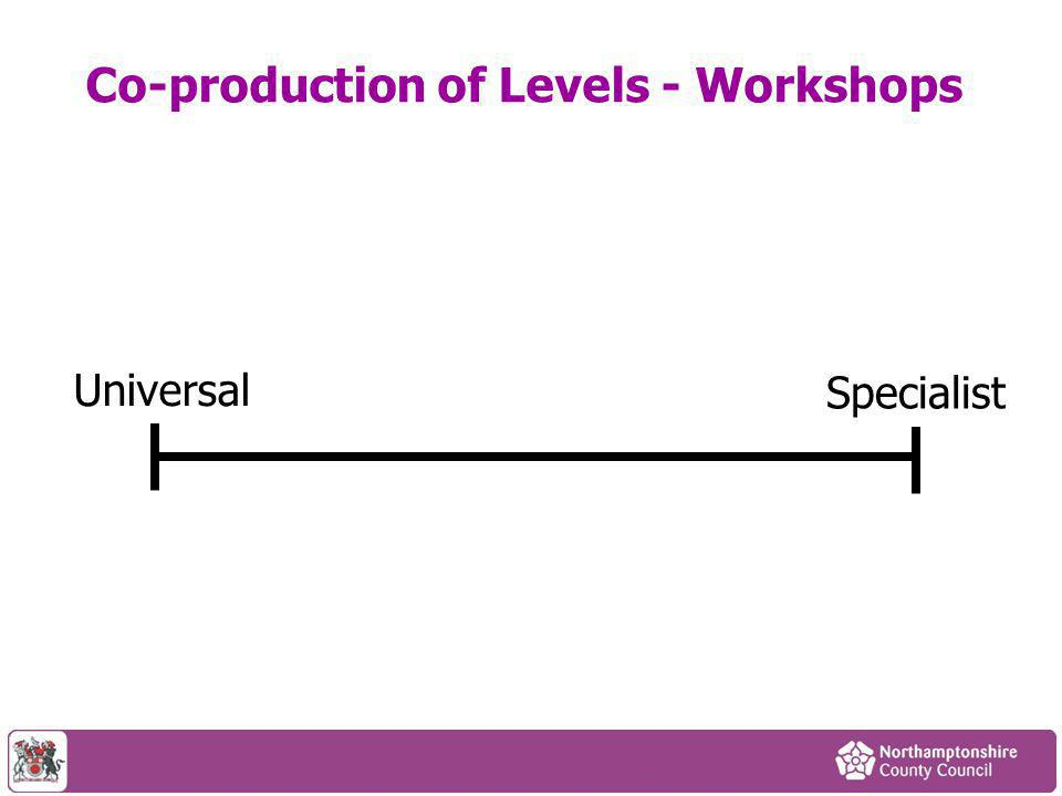Co-production of Levels - Workshops Universal Specialist