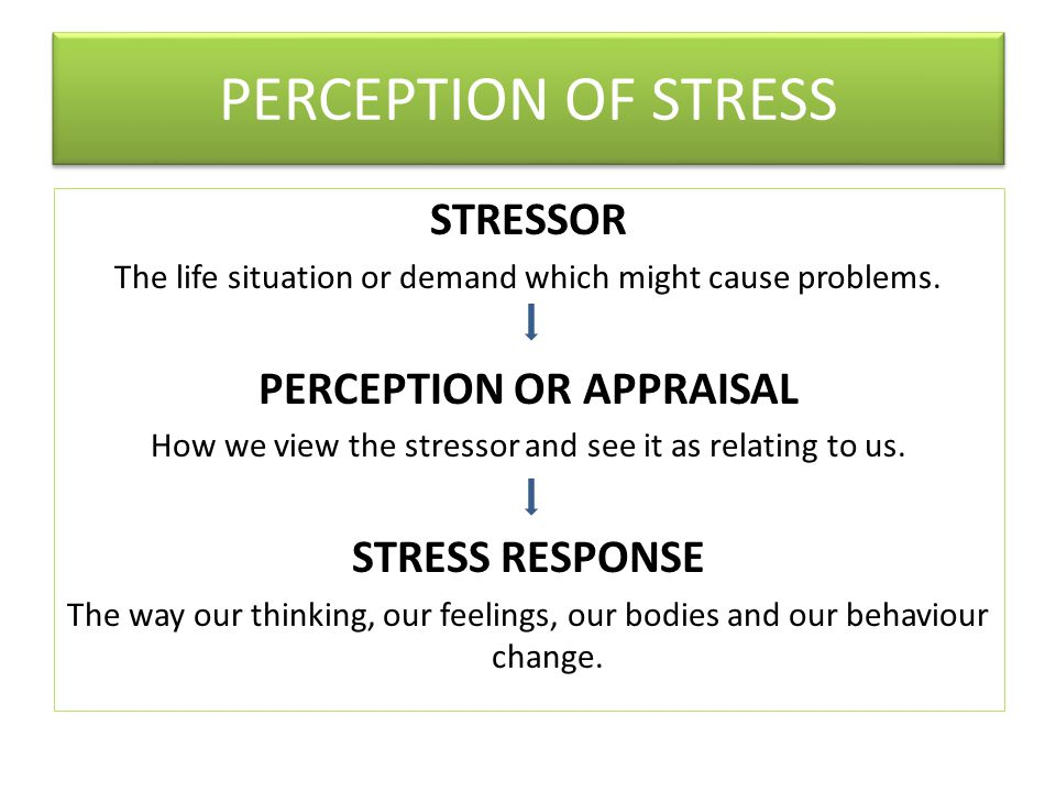 PERCEPTION OF STRESS STRESSOR The life situation or demand which might cause problems.