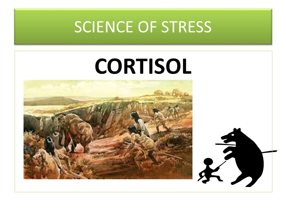 CORTISOL SCIENCE OF STRESS