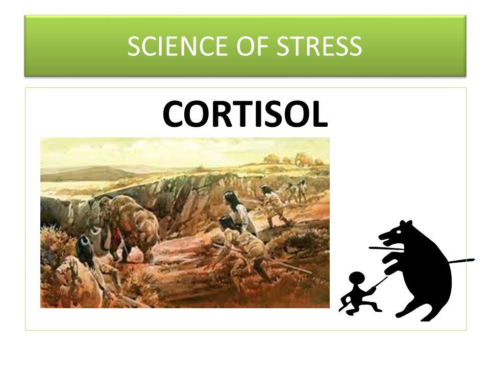 INTERNAL EXTERNAL SOURCES OF STRESS