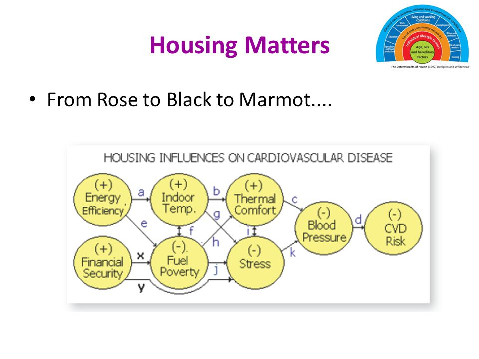 Housing Matters From Rose to Black to Marmot....