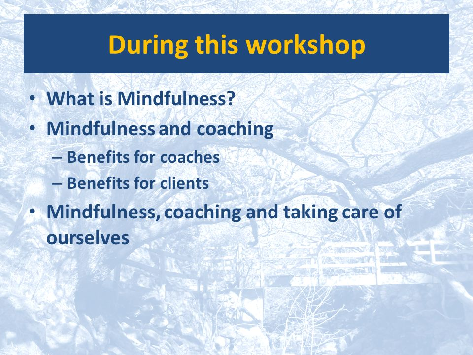During this workshop What is Mindfulness? Mindfulness and coaching – Benefits for coaches – Benefits for clients Mindfulness, coaching and taking care