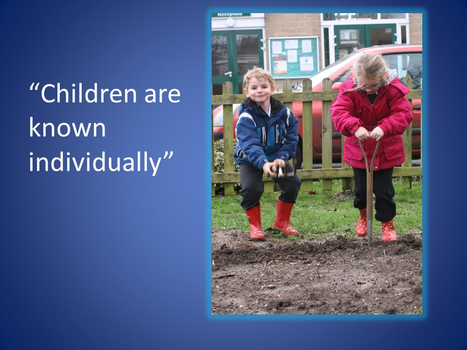 A curriculum that provides pupils with moments of awe and wonder