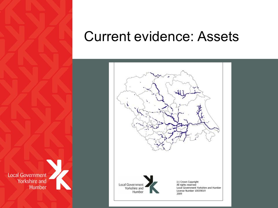 Current evidence: Assets
