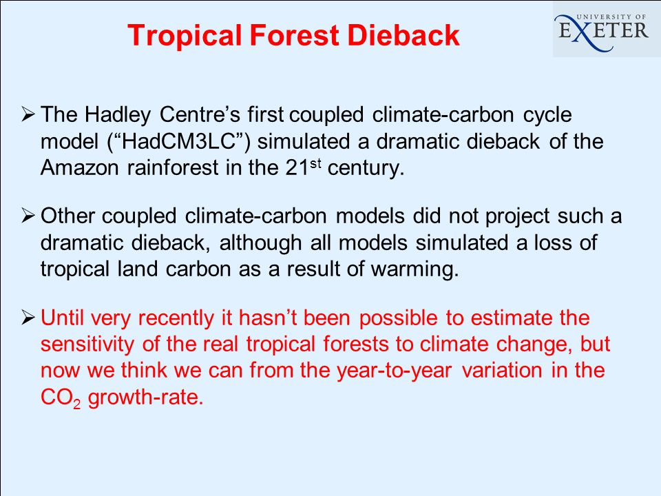 Tropical Forest Dieback  The Hadley Centre's first coupled climate-carbon cycle model ( HadCM3LC ) simulated a dramatic dieback of the Amazon rainforest in the 21 st century.