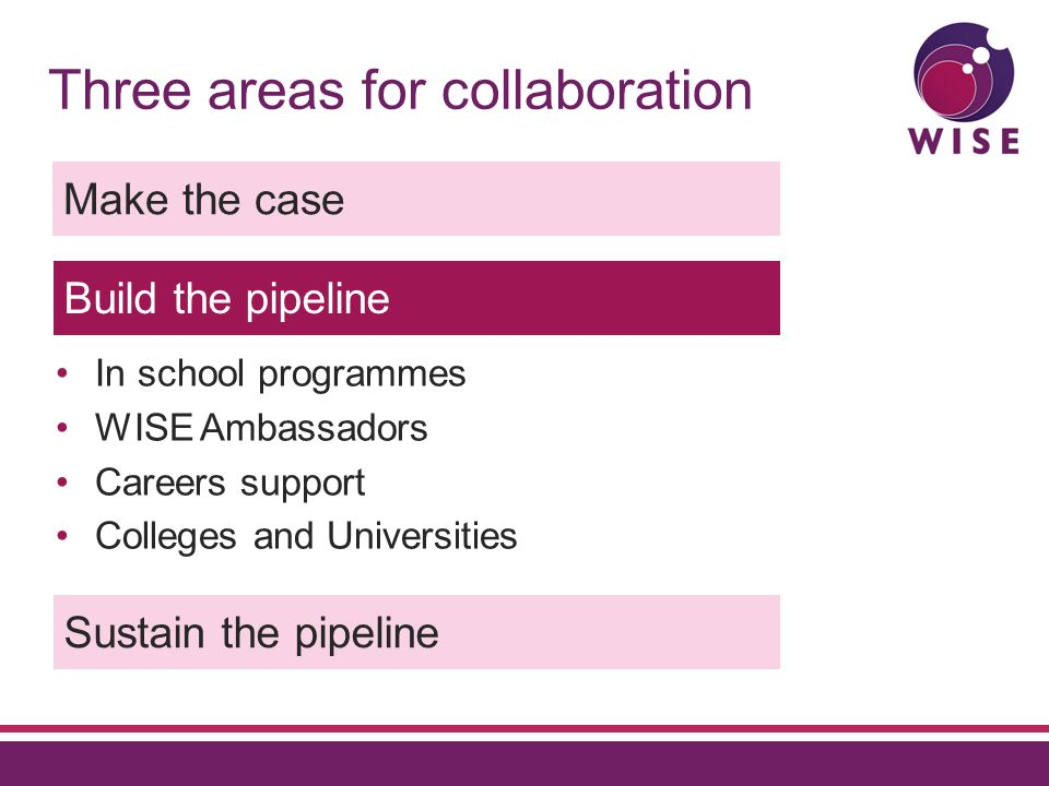 Three areas for collaboration Make the case Build the pipeline Sustain the pipeline In school programmes WISE Ambassadors Careers support Colleges and Universities