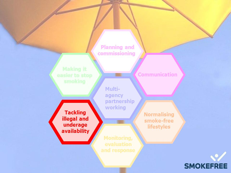 Planning and commissioning Communication Normalising smoke-free lifestyles Making it easier to stop smoking Monitoring, evaluation and response Multi- agency partnership working Tackling illegal and underage availability