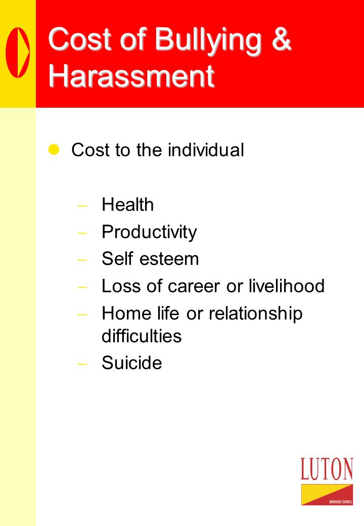 Cost of Bullying & Harassment Cost to the individual  Health  Productivity  Self esteem  Loss of career or livelihood  Home life or relationship difficulties  Suicide
