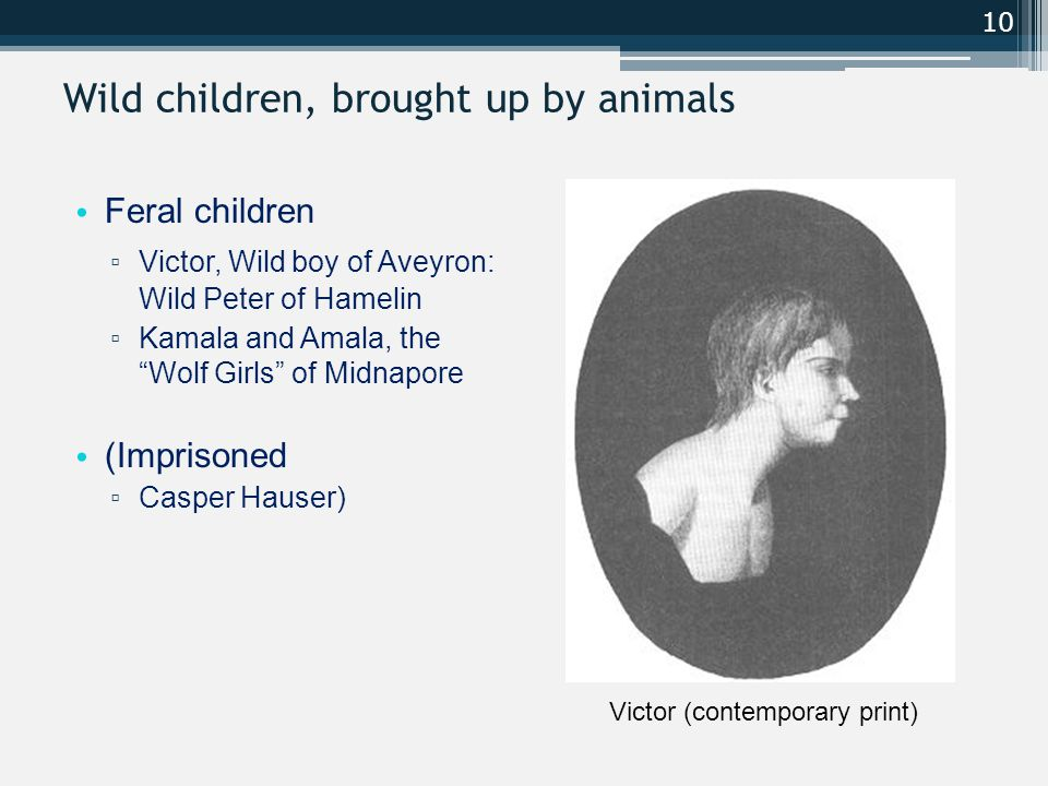 Wild children, brought up by animals Feral children ▫ Victor, Wild boy of Aveyron: Wild Peter of Hamelin ▫ Kamala and Amala, the Wolf Girls of Midnapore (Imprisoned ▫ Casper Hauser) 10 Victor (contemporary print)
