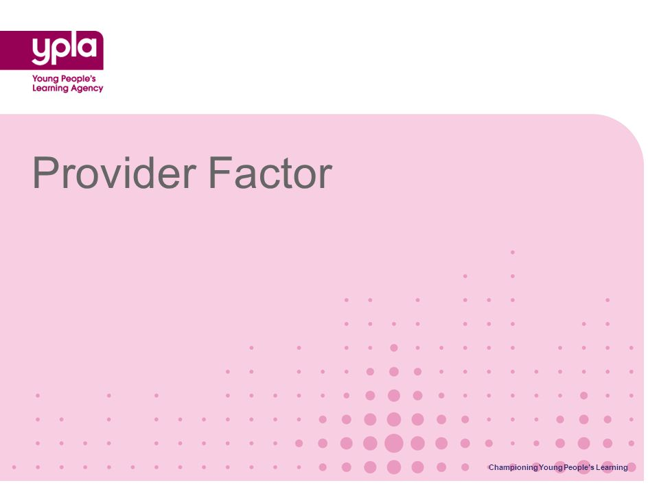 Provider Factor Championing Young People's Learning