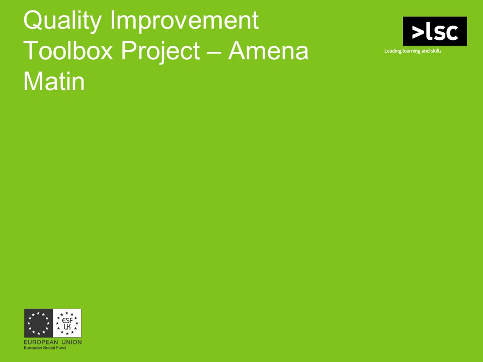 Quality Improvement Toolbox Project – Amena Matin