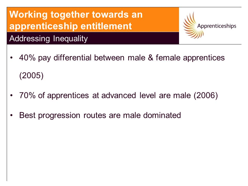 40% pay differential between male & female apprentices (2005) 70% of apprentices at advanced level are male (2006) Best progression routes are male do
