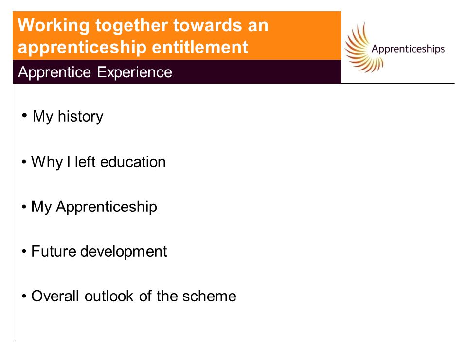 National Apprenticeship Service My history Why I left education My Apprenticeship Future development Overall outlook of the scheme Working together to