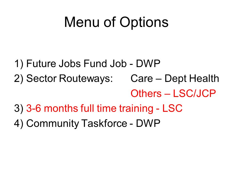 Menu of Options 1) Future Jobs Fund Job - DWP 2) Sector Routeways:Care – Dept Health Others – LSC/JCP 3) 3-6 months full time training - LSC 4) Community Taskforce - DWP