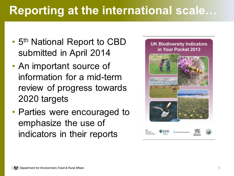 Reporting at the international scale… 5 th National Report to CBD submitted in April 2014 An important source of information for a mid-term review of