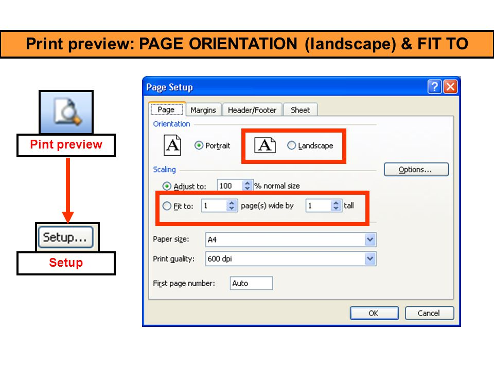 Print preview: PAGE ORIENTATION (landscape) & FIT TO Pint preview Setup