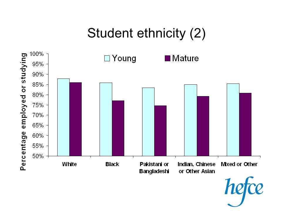 Student ethnicity (2)