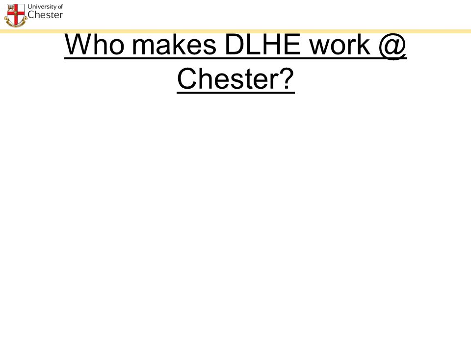 Who makes DLHE work @ Chester?