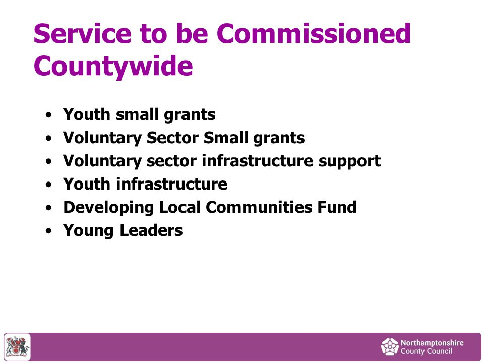 Service to be Commissioned Countywide Youth small grants Voluntary Sector Small grants Voluntary sector infrastructure support Youth infrastructure Developing Local Communities Fund Young Leaders