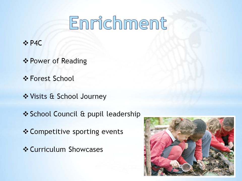  P4C  Power of Reading  Forest School  Visits & School Journey  School Council & pupil leadership  Competitive sporting events  Curriculum Showcases