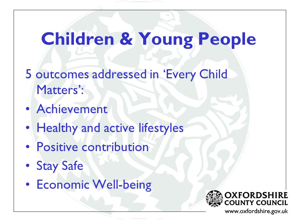 Children & Young People 5 outcomes addressed in 'Every Child Matters': Achievement Healthy and active lifestyles Positive contribution Stay Safe Economic Well-being