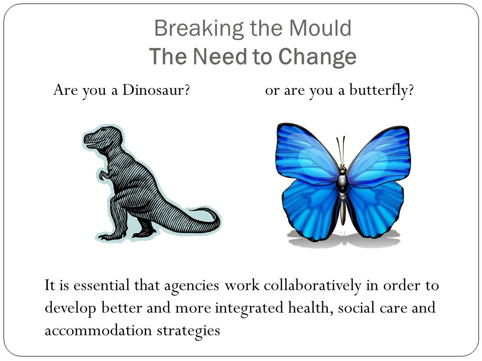 Breaking the Mould The Need to Change Are you a Dinosaur or are you a butterfly.