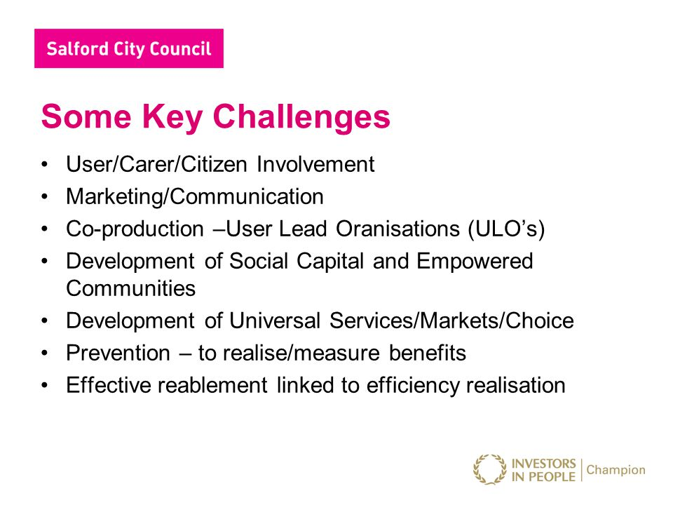 Some Key Challenges User/Carer/Citizen Involvement Marketing/Communication Co-production –User Lead Oranisations (ULO's) Development of Social Capital