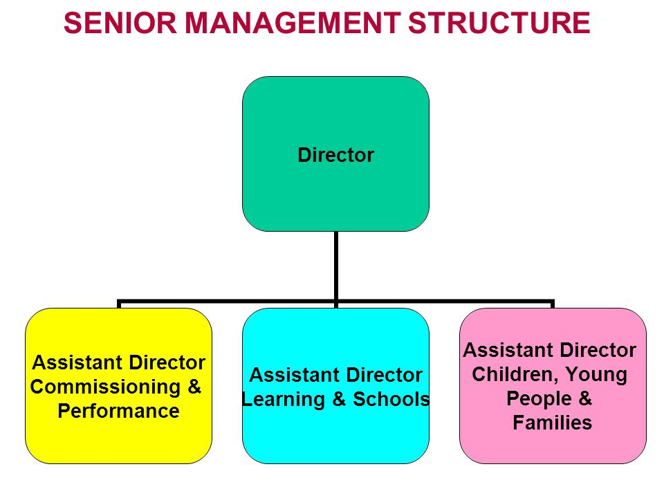 SENIOR MANAGEMENT STRUCTURE Director Assistant Director Commissioning & Performance Assistant Director Learning & Schools Assistant Director Children, Young People & Families
