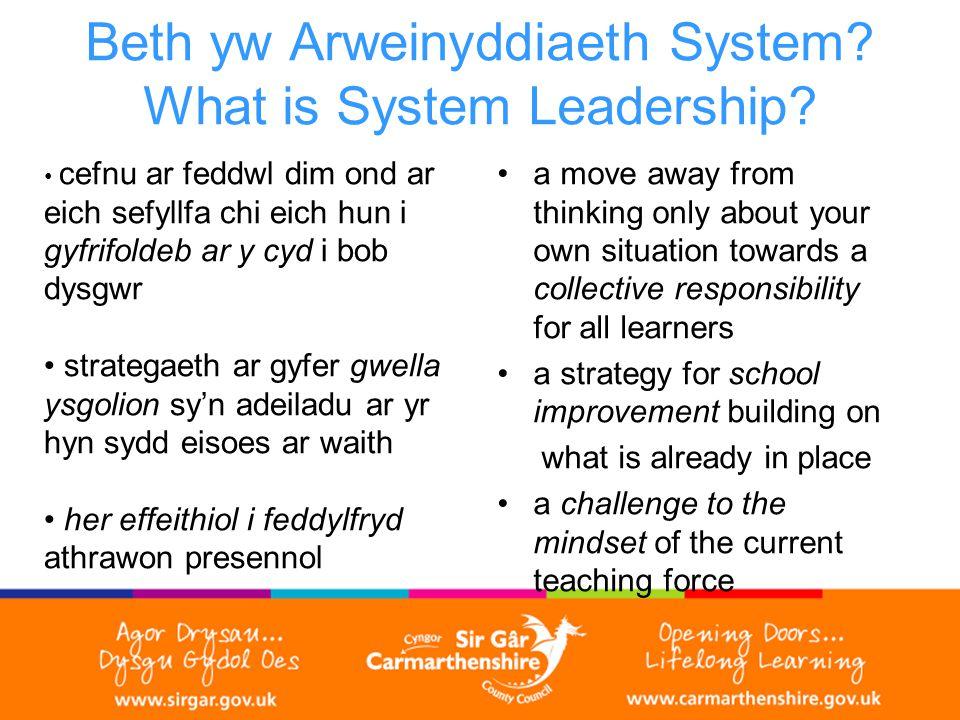 Beth yw Arweinyddiaeth System. What is System Leadership.