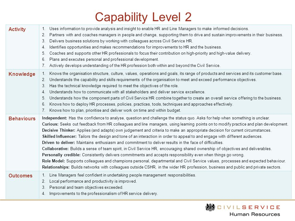 Capability Level 3 Activity 1.Offers unique insight into the organisation borne from a deep understanding of the business and HR profession.