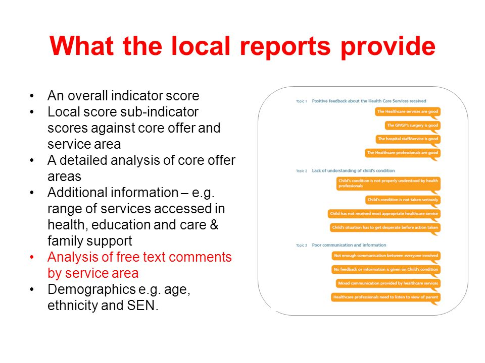 What the local reports provide An overall indicator score Local score sub-indicator scores against core offer and service area A detailed analysis of core offer areas Additional information – e.g.