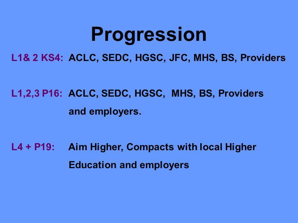 Progression L1& 2 KS4: ACLC, SEDC, HGSC, JFC, MHS, BS, Providers L1,2,3 P16: ACLC, SEDC, HGSC, MHS, BS, Providers and employers. L4 + P19: Aim Higher,