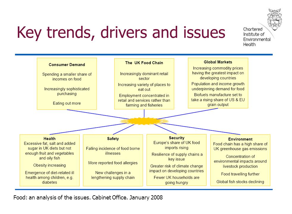 Key trends, drivers and issues Food: an analysis of the issues. Cabinet Office. January 2008