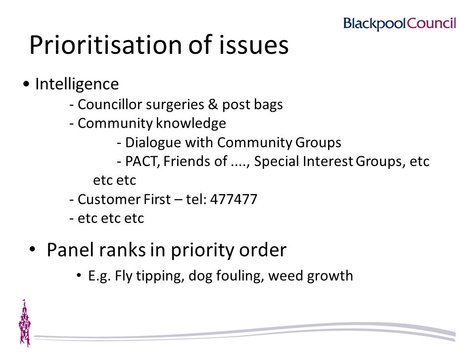 Prioritisation of issues Panel ranks in priority order E.g.