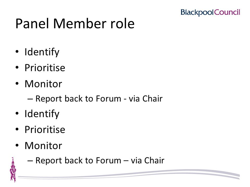 Panel Member role Identify Prioritise Monitor – Report back to Forum - via Chair Identify Prioritise Monitor – Report back to Forum – via Chair